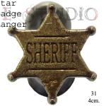 Star badge hanger copy